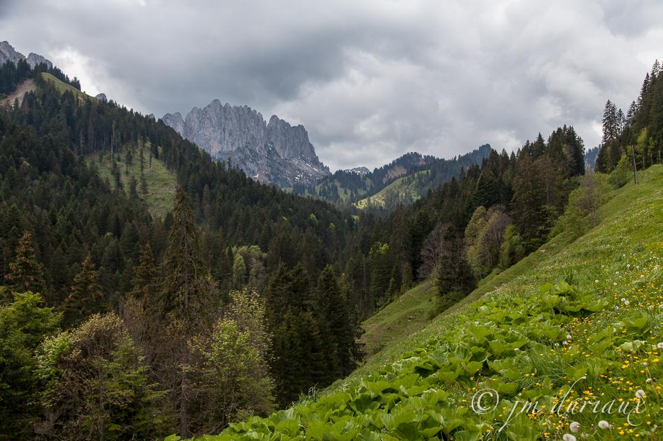 Monte_e au Soldat-30.jpg