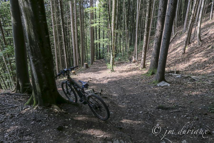 VTT-Tourisme-Montsalvens-Gruyère-8